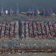 особенности контейнерных терминалов